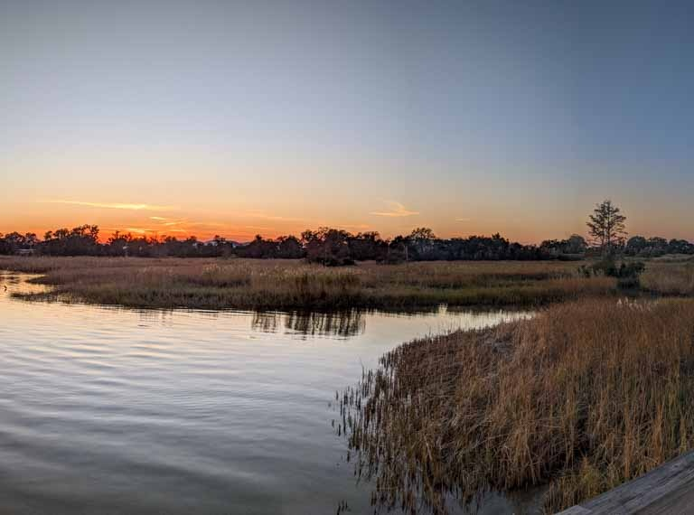 20191116 Arlington Park Salt Marsh 768