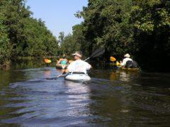 Paddling one mile creek
