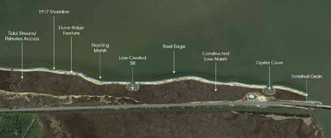 Rendering of Completed Living Shoreline along Dauphin Island Causeway