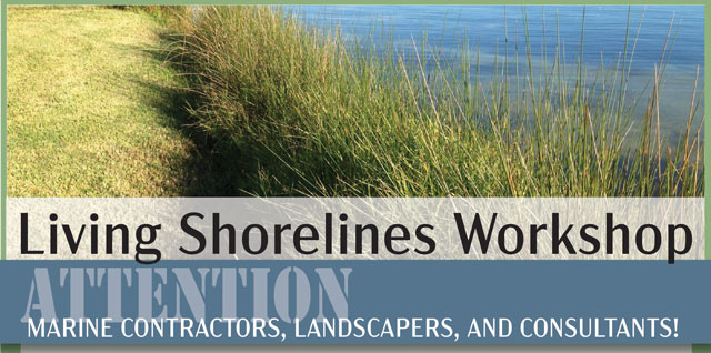 Living Shorelines Workshop