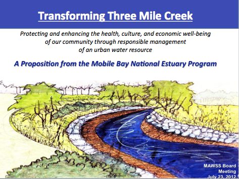 Three Mile Creek Vision